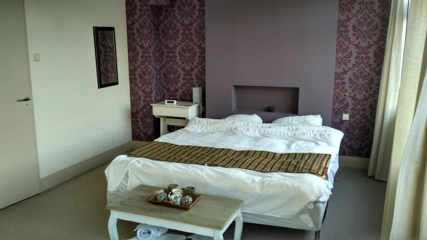 Large bedroom with private bathroom - Berkel en Rodenrijs - Dom