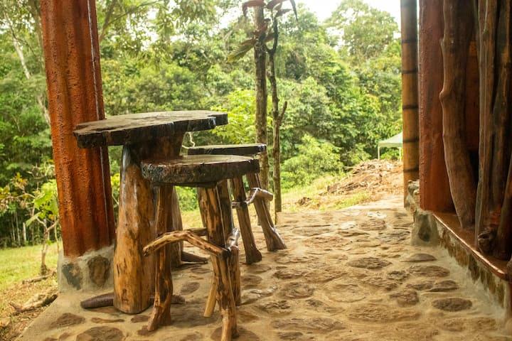 Hermosa Cabaña en la Selva Colombiana