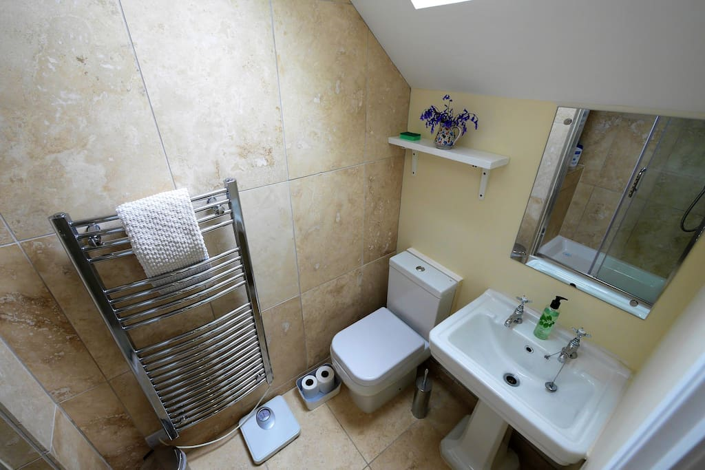 The shower room. Large heated towel rail.