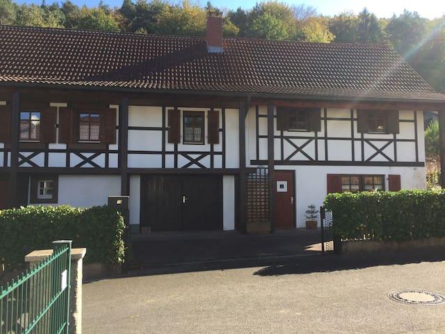 Ferienwohnung im Herzen des Pfälzer Waldes - Schönau (Pfalz) - Apartment