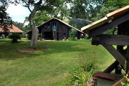 Ancienne grange dans un parc de 5ha - SOUPROSSE - Haus