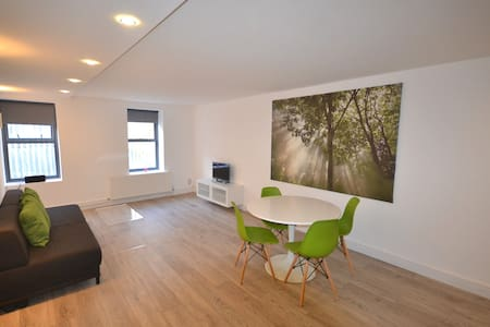 Brilliantly Stylish & Large one bedroom apartment - London - Leilighet