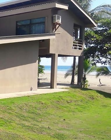 Sand Dollar Cove