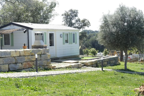 Casa da Fuzeta MobileHome 4* tout confort-AloeVera