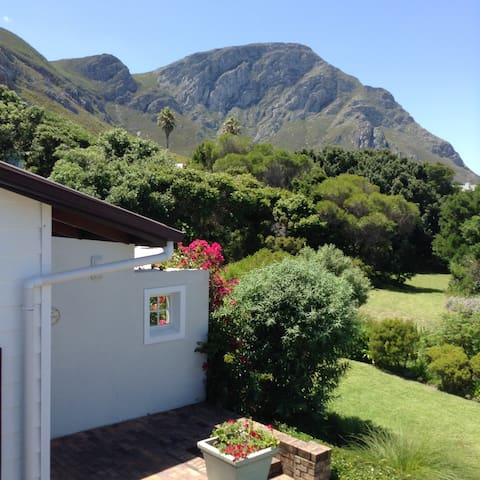 Walk to the beach and famous cliff path - studio - Hermanus - Appartement