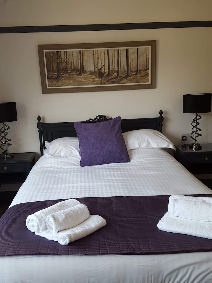 Large Double room with king bed and own bathroom
