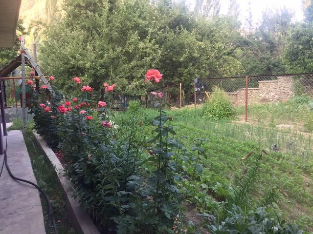Сад Бадахшана
