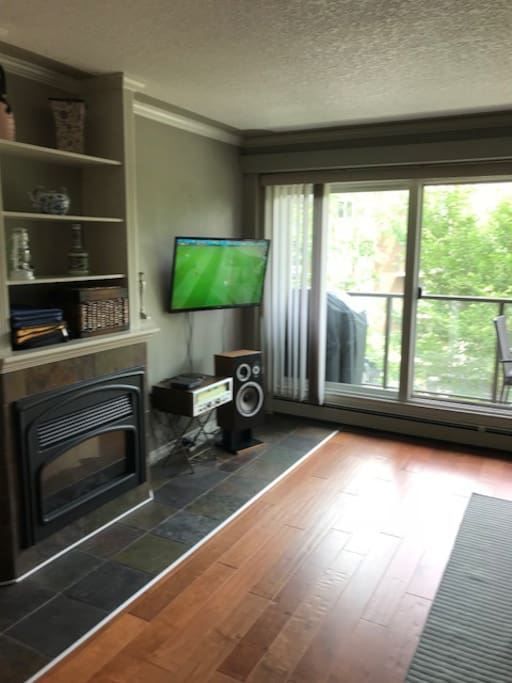 living room/fireplace/sound system/TV
