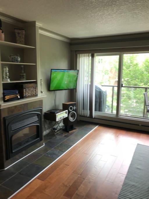 living room/fireplace/sound system/TV