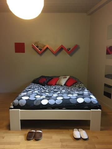Chambre dans charmante maison proche Metz