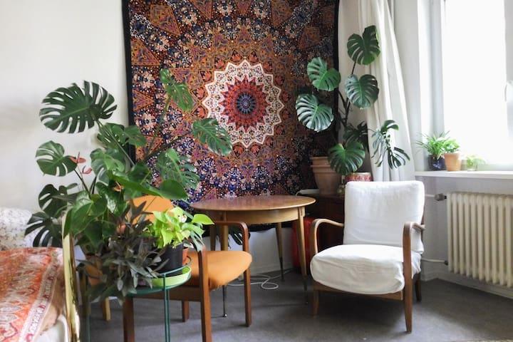 Bright, homey and plant'iful studio in Schöneberg