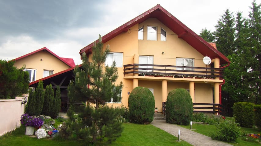 House in Bogdanesti