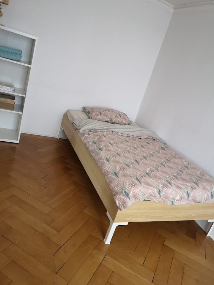 Charming room near the center and old town!
