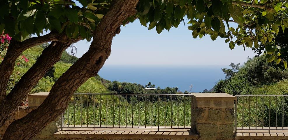 Villa Silvana a Serrara Fontana, Ischia