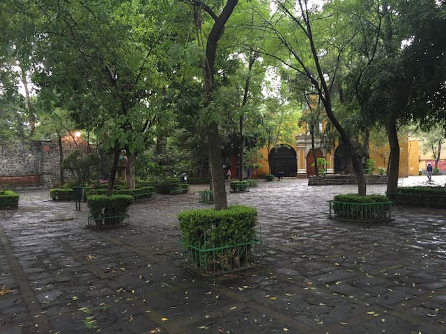 Lovely suite in  The  The heart of Coyoacán