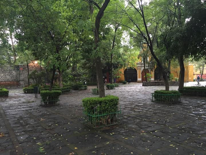Suite en el corazón de Coyoacán