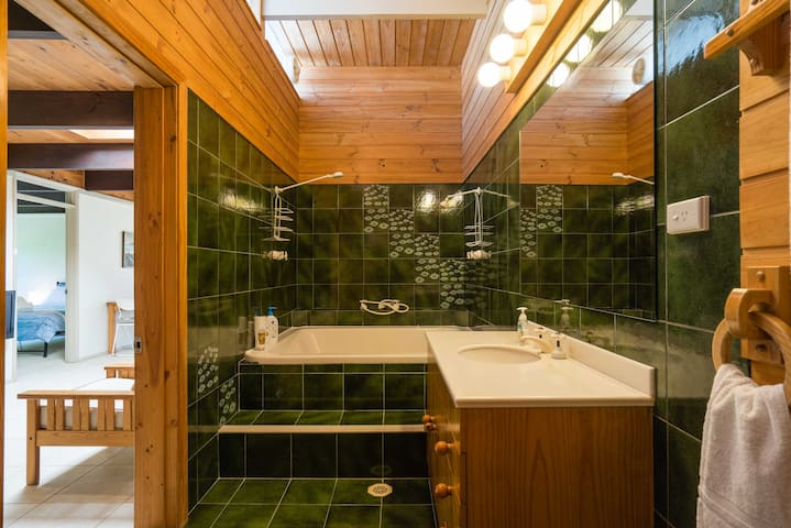 Bathroom with twin showers over bathtub. No spa.