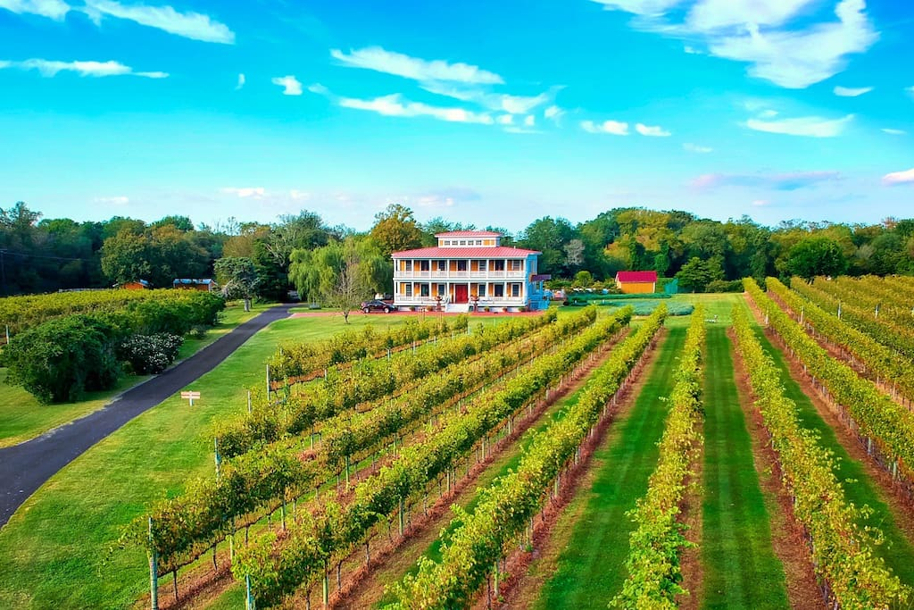 Vineyard Sanctuary Private Hamilton Cottage Guesthouses