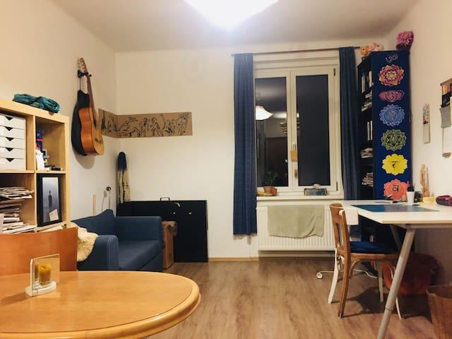 Simple und Zentrale Wohnung in Dresden