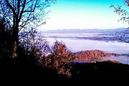 Asheville's Island In The Sky Pet Friendly 409710 - Weaverville