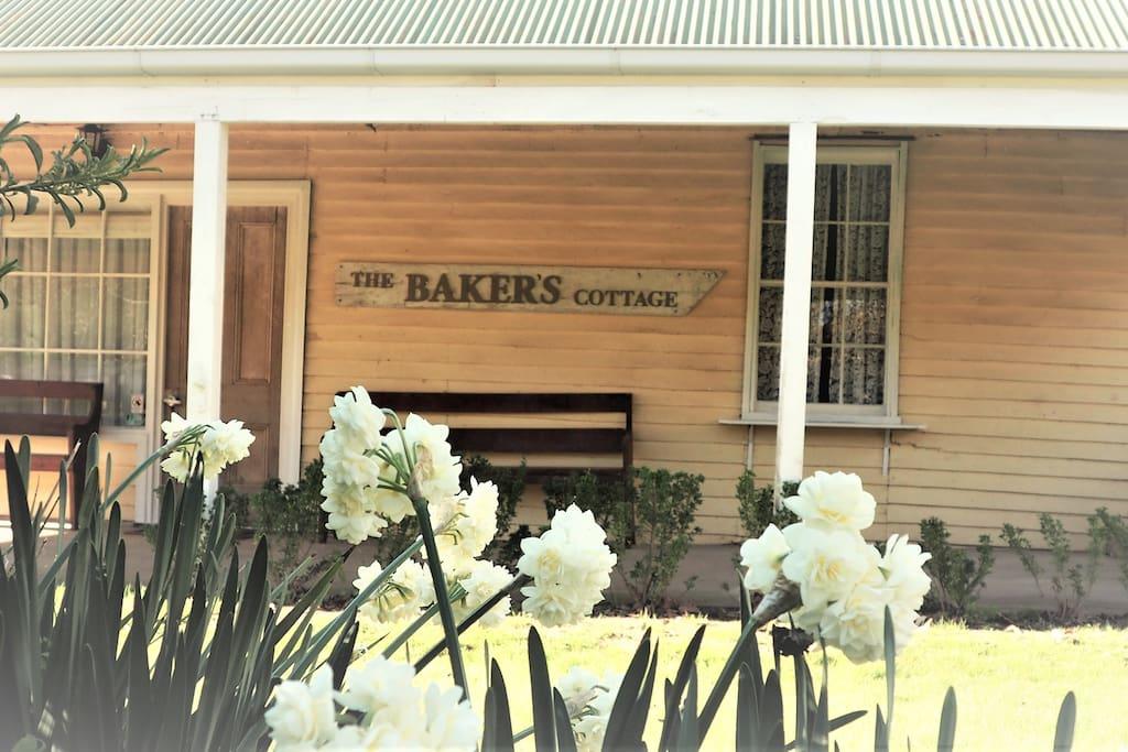 The Baker's Store