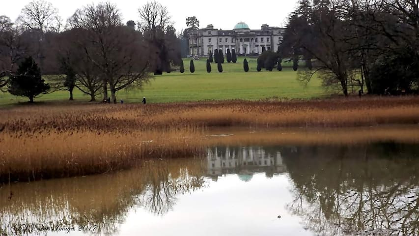 Emo Court and Parklands Recently renovated, Emo Court has the most stunning lakeside walks and gardens. Entry is free and there are tea rooms for that little treat after your walk. From May to October, there's also guided walks of the house itself