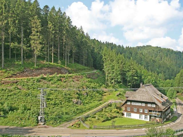 Historische Sagemuhle 4418.1 - Furtwangen