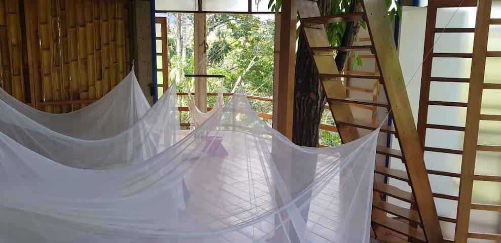 Casa de las Florez Amazonia Colombiana (Putumayo)