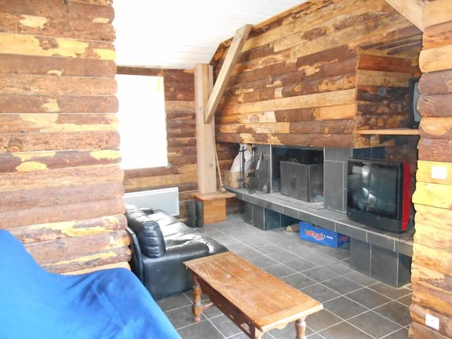 la partie salon avec cheminée et télé