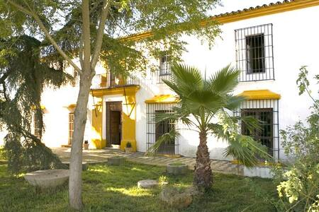 Andalusian Manor House with pool - El Real de la Jara