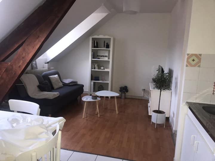 Grand appartement à 10 minutes de Rouen centre