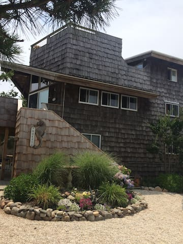 Harvey Cedars Beach House