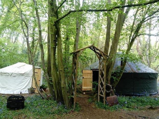 Yurt  -Ancient Woodland Retreat buy 2 get 1 free
