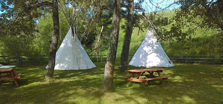 White Buffalo Camp Tipi #2