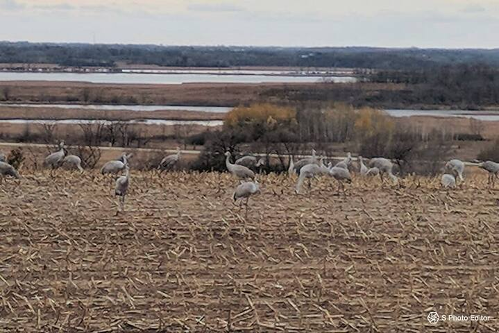 Visit the Great Horicon Marsh
