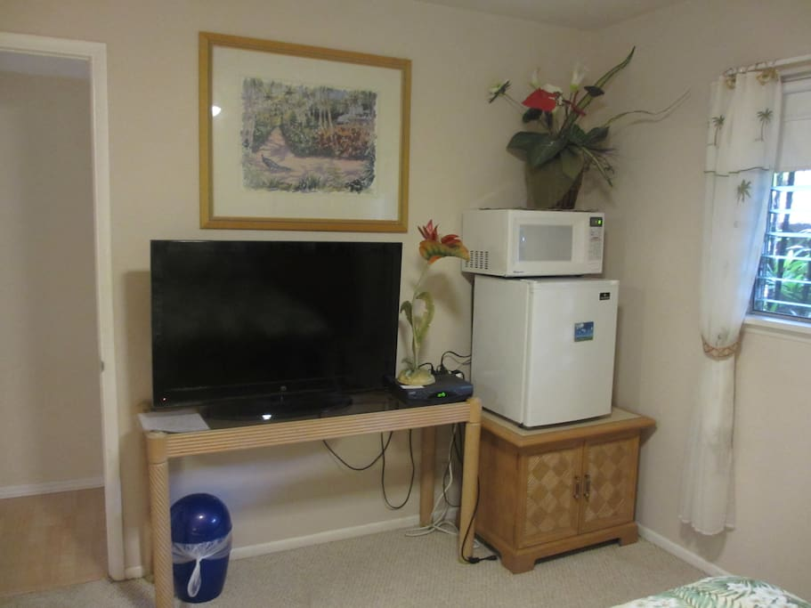 TV, small fridge and microwave as well as coffee maker and a toaster....