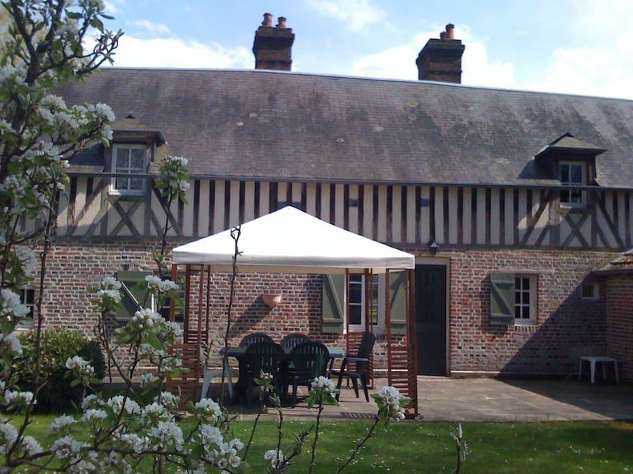 Garden terrace view
