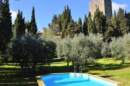 Torre dei Belforti - Montecatini Val di Cecina - Linna