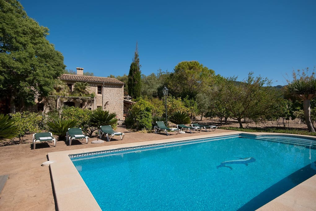 Beautiful tiled pool