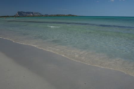 Holiday flat 500 m from beach - San Teodoro - Apartament