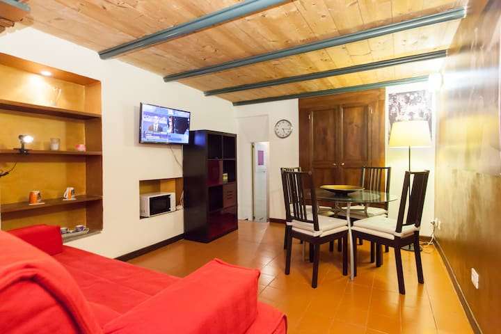 Flat in Trevi Fountain-Spain Square - Roma - Apartamento