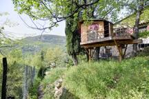 Garten mit Baumhaus