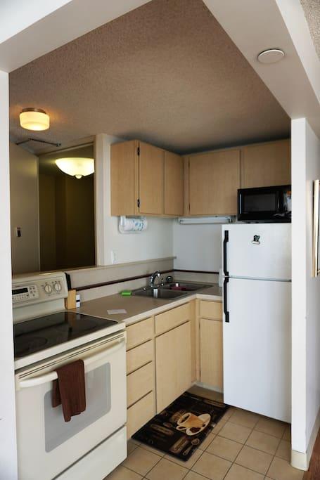 Kitchen: Fridge, Microwave, Stove/Oven