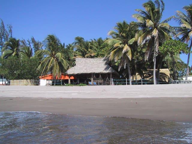 Beach Front Property on wild beach!