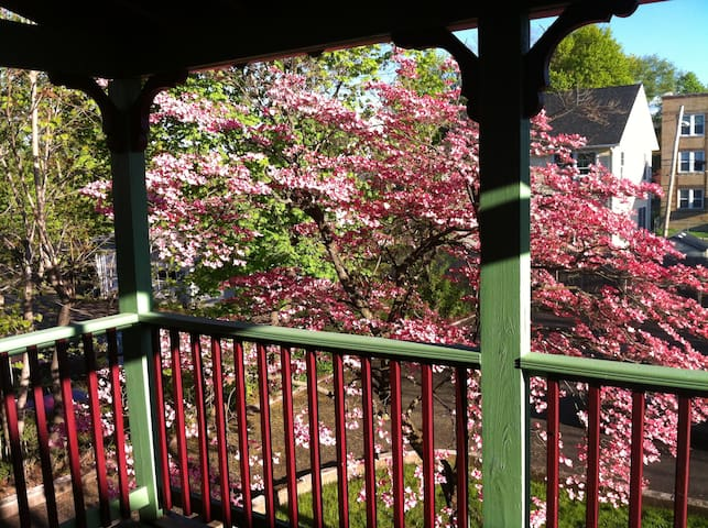 Cherry Blossom Apartment - Hartford - Appartement