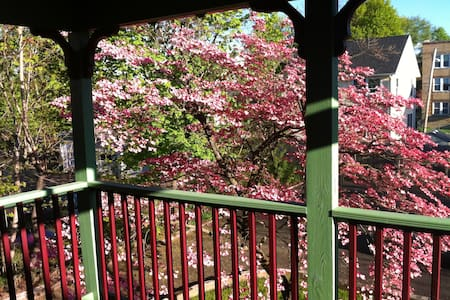 Cherry Blossom Apartment - Hartford