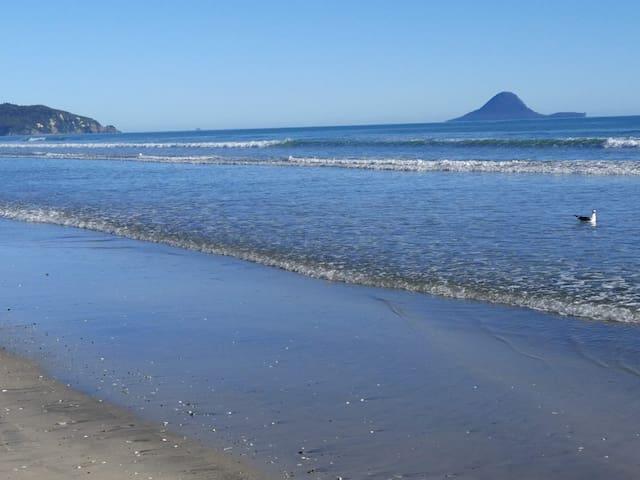 'Whakata Cottage' - with beach across road