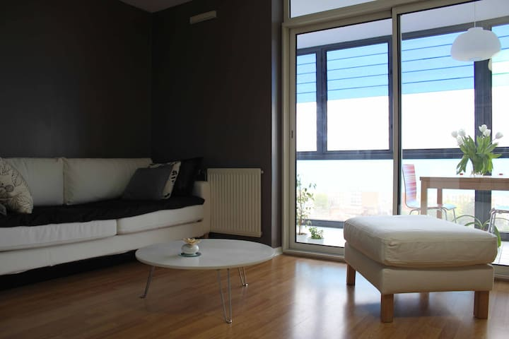 Standing flat / town center - Lille - Apartament