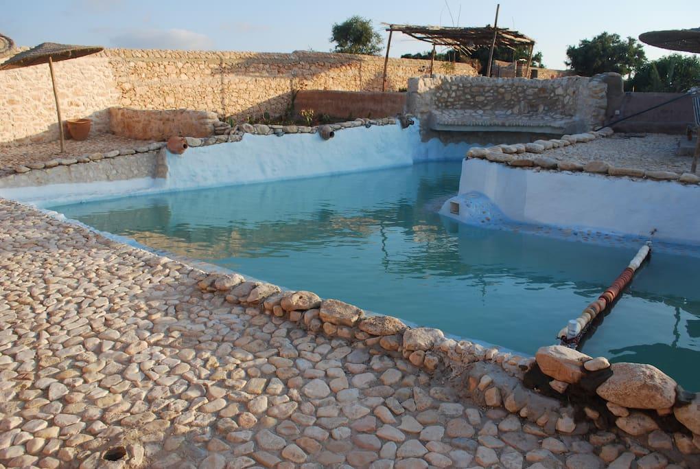 La piscine en forme L. un côté de 11 m avec un bassin pour enfant et l'autre de 12 m un bassin de nage.