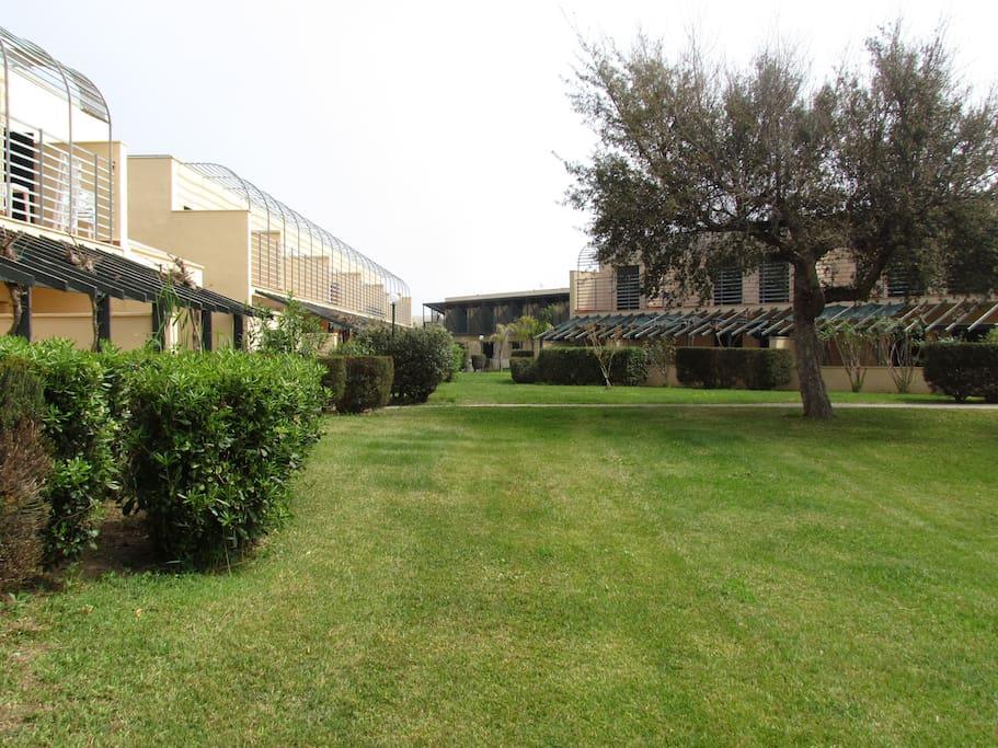Il verde che circonda l'appartamento;  The greenery surrounding the apartment